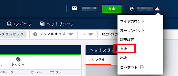 Pinnacle_入金をクリック