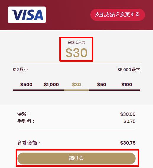 チェリーカジノ_入金クレジットカード1