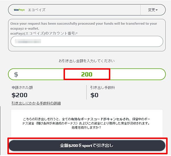 NETBET_出金エコペイズ-2
