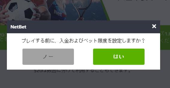 NETBET_登録6