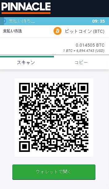 Pinnacle_入金ビットコイン3