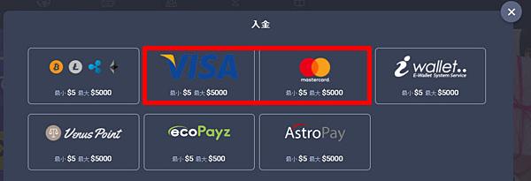 ベットティルト_visa1